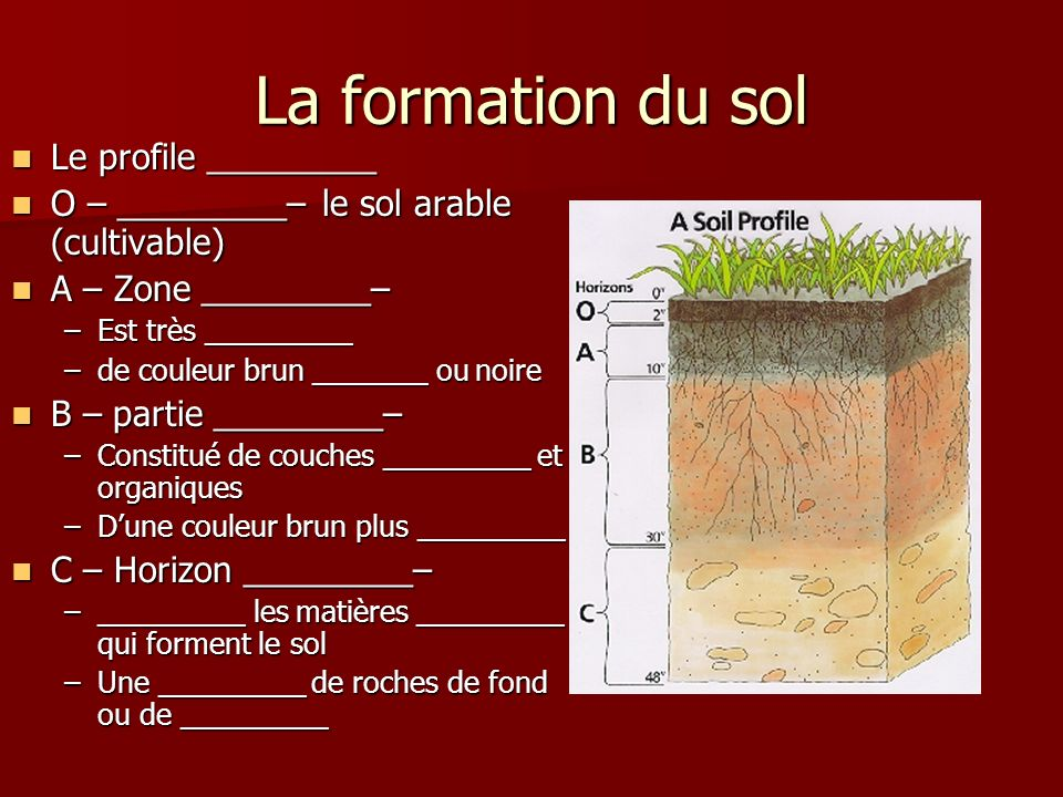 La formation du sol Le profile _________