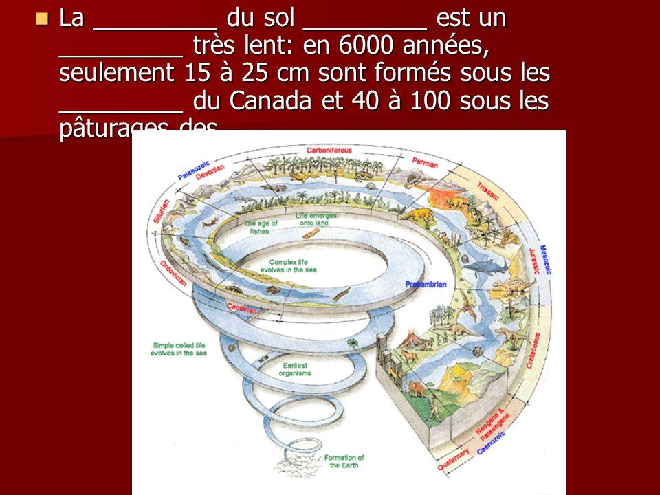 La _________ du sol _________ est un _________ très lent: en 6000 années, seulement 15 à 25 cm sont formés sous les _________ du Canada et 40 à 100 sous les pâturages des _________.