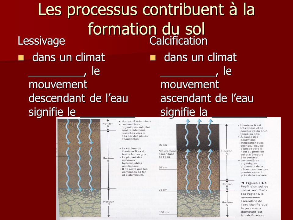 Les processus contribuent à la formation du sol