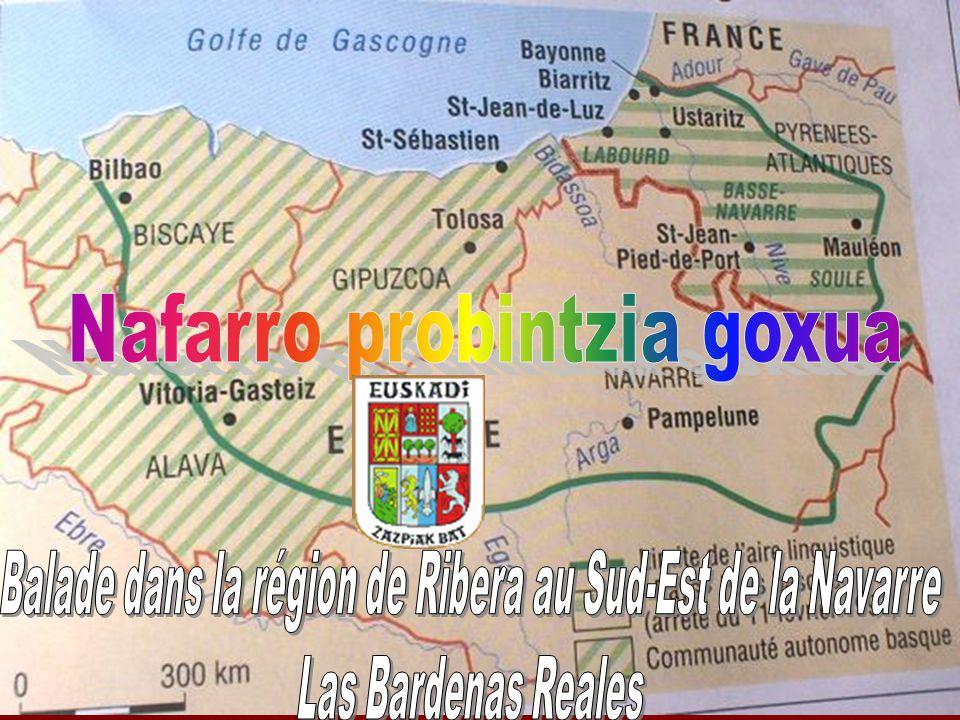 Balade dans la région de Ribera au Sud-Est de la Navarre
