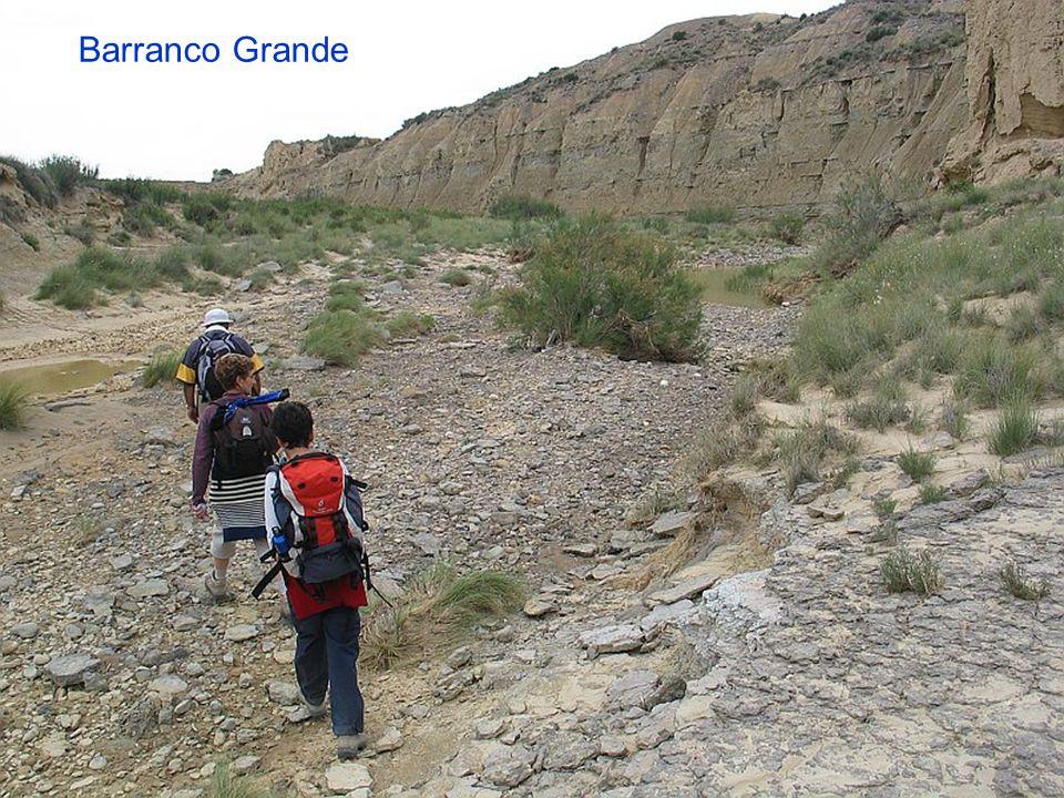 Barranco Grande