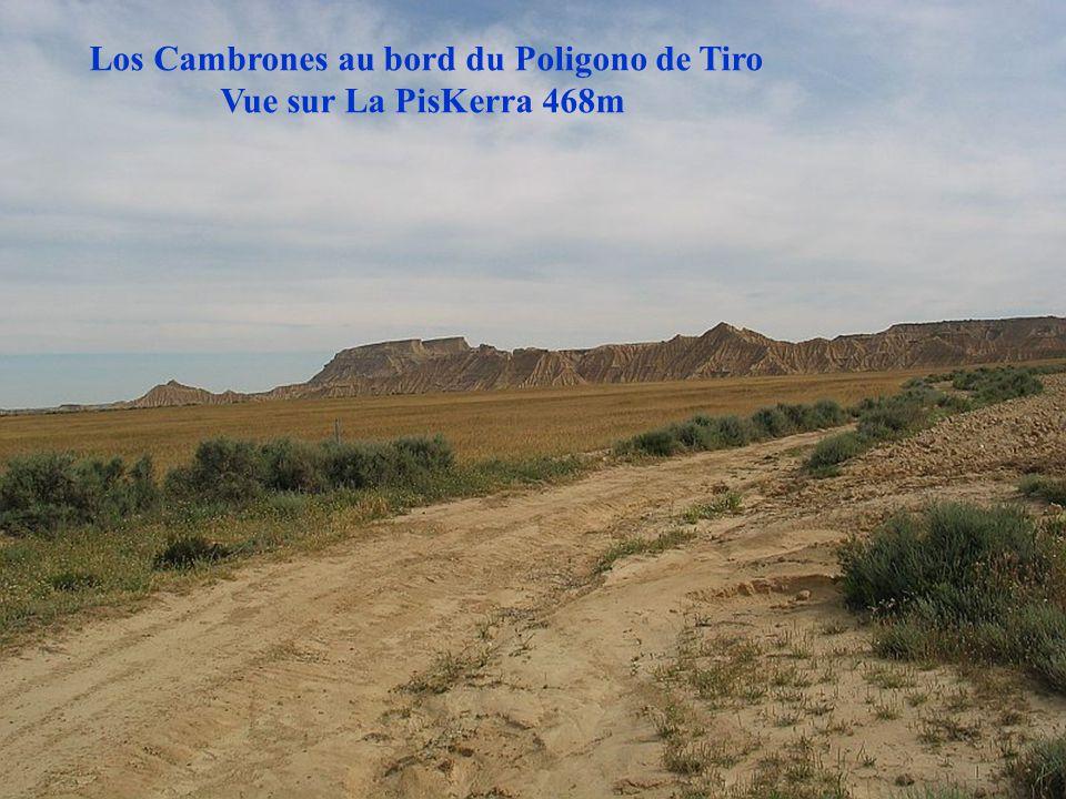 Los Cambrones au bord du Poligono de Tiro