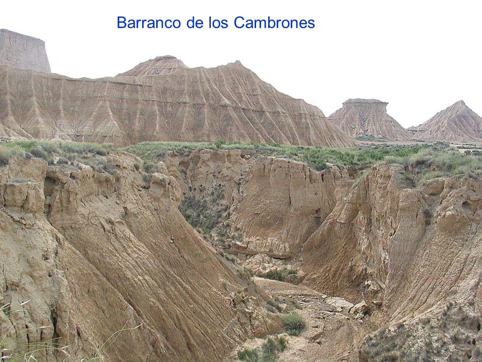 Barranco de los Cambrones