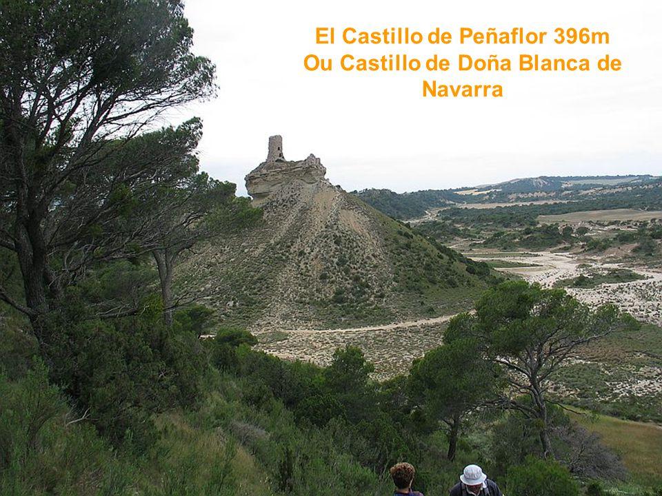 El Castillo de Peñaflor 396m Ou Castillo de Doña Blanca de Navarra