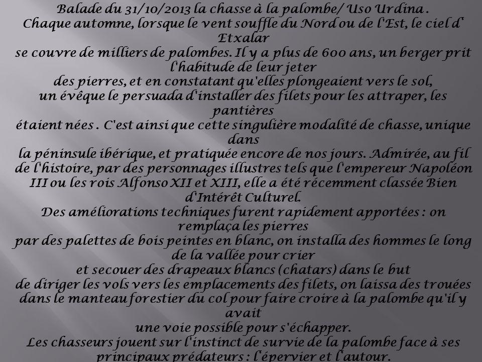Zorionak Balade du 31/10/2013 la chasse à la palombe/ Uso Urdina .