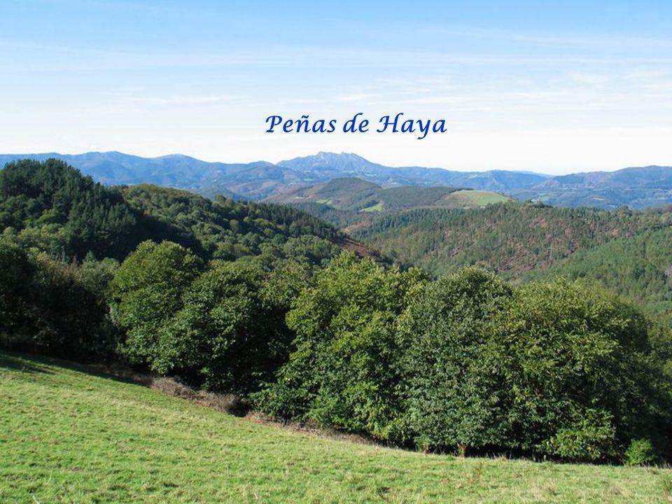 Peñas de Haya