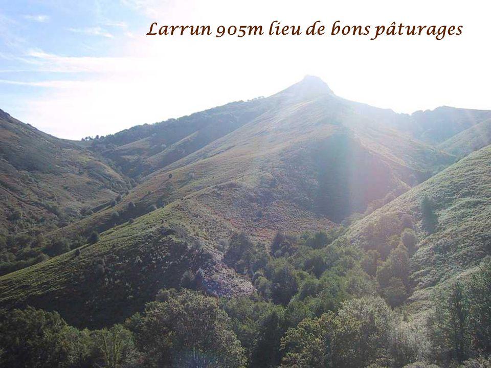 Larrun 905m lieu de bons pâturages