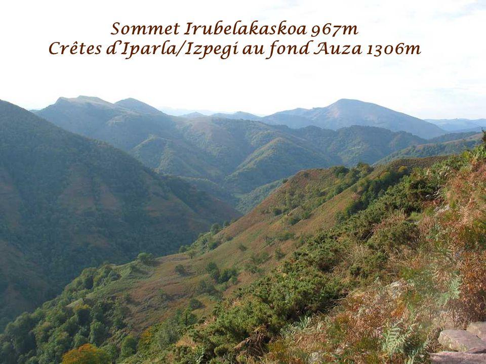 Sommet Irubelakaskoa 967m Crêtes d'Iparla/Izpegi au fond Auza 1306m