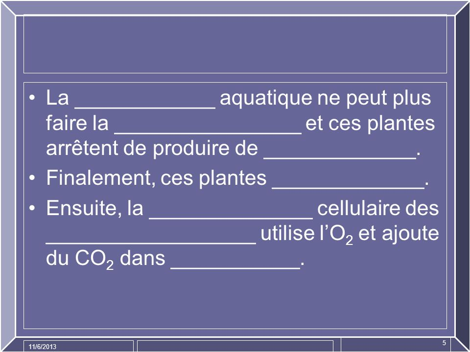 Finalement, ces plantes _____________.