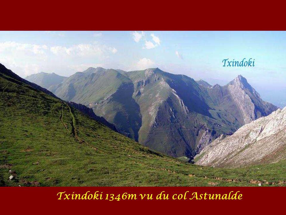 Txindoki 1346m vu du col Astunalde