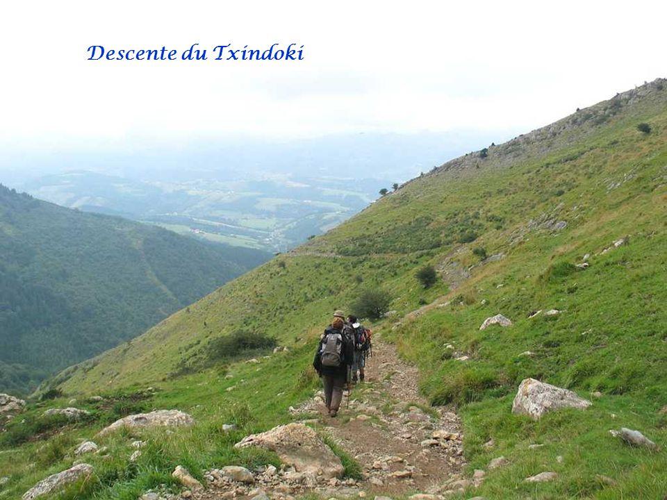 Descente du Txindoki