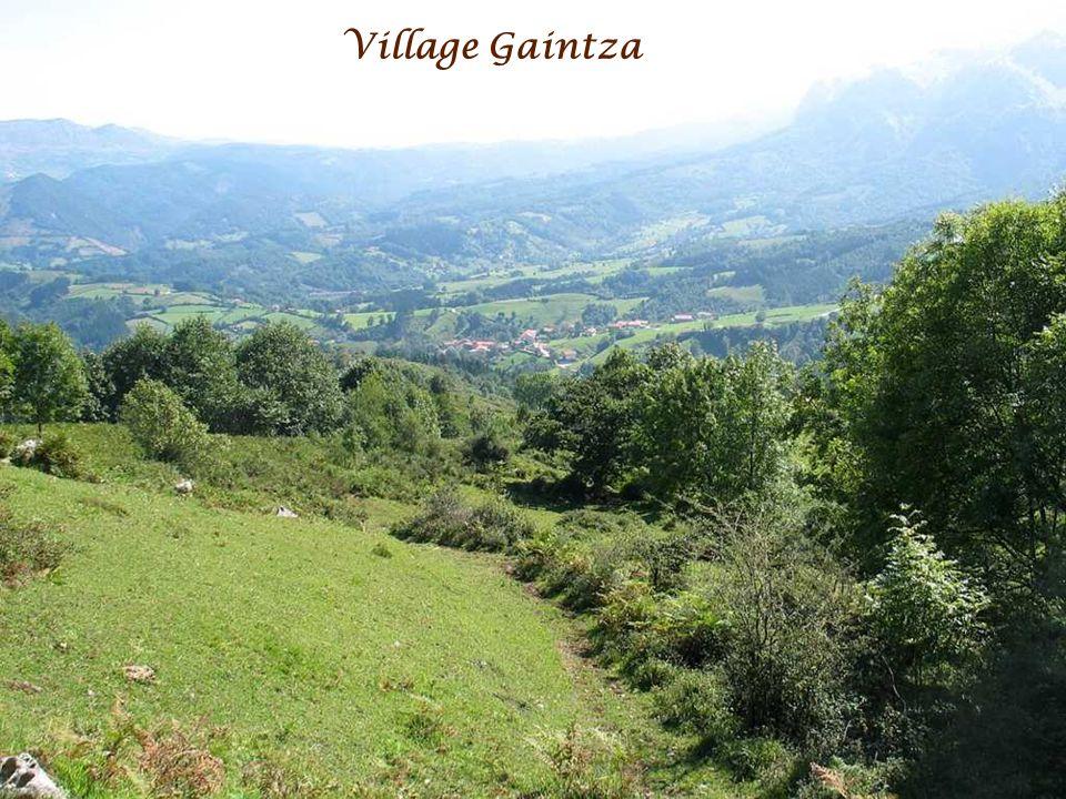 Village Gaintza