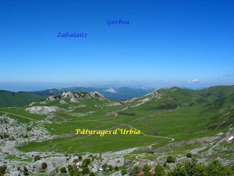 Gorbea Zabalaitz Pâturages d'Urbia