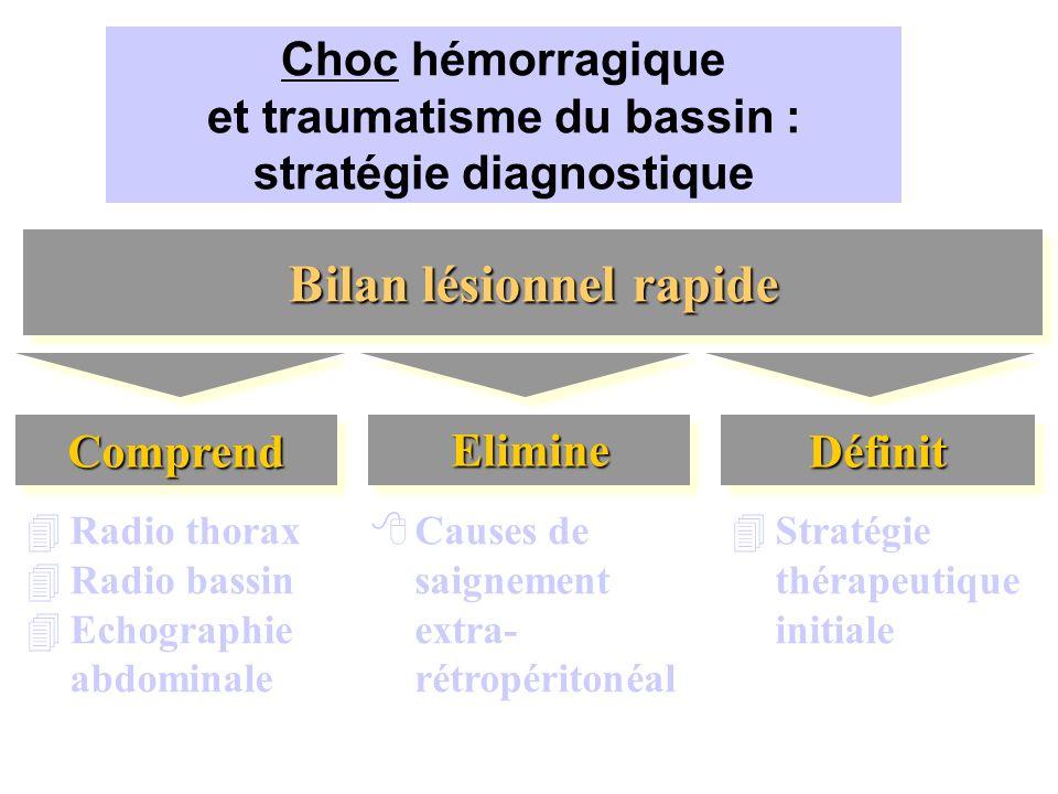 Choc hémorragique et traumatisme du bassin : stratégie diagnostique