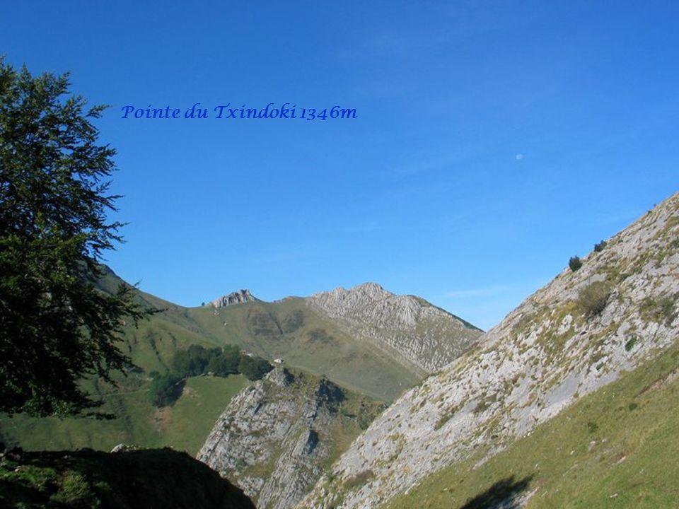 Pointe du Txindoki 1346m