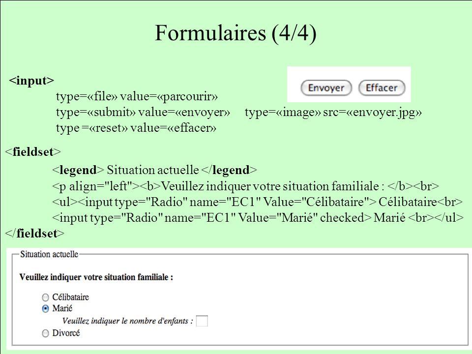 Formulaires (4/4) <legend> Situation actuelle </legend>