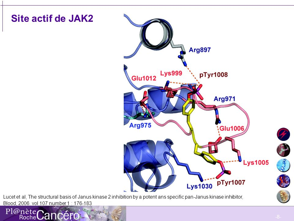 Site actif de JAK2