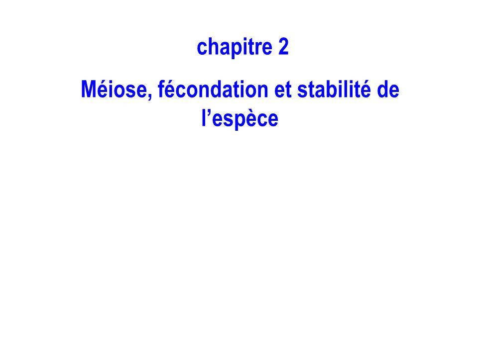 Méiose, fécondation et stabilité de l'espèce