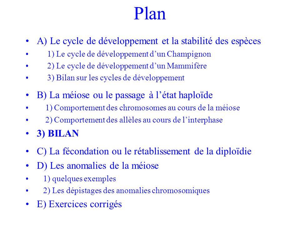 Plan A) Le cycle de développement et la stabilité des espèces