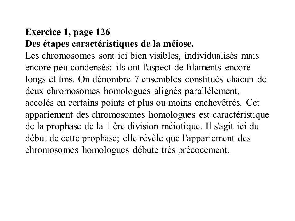 Exercice 1, page 126 Des étapes caractéristiques de la méiose