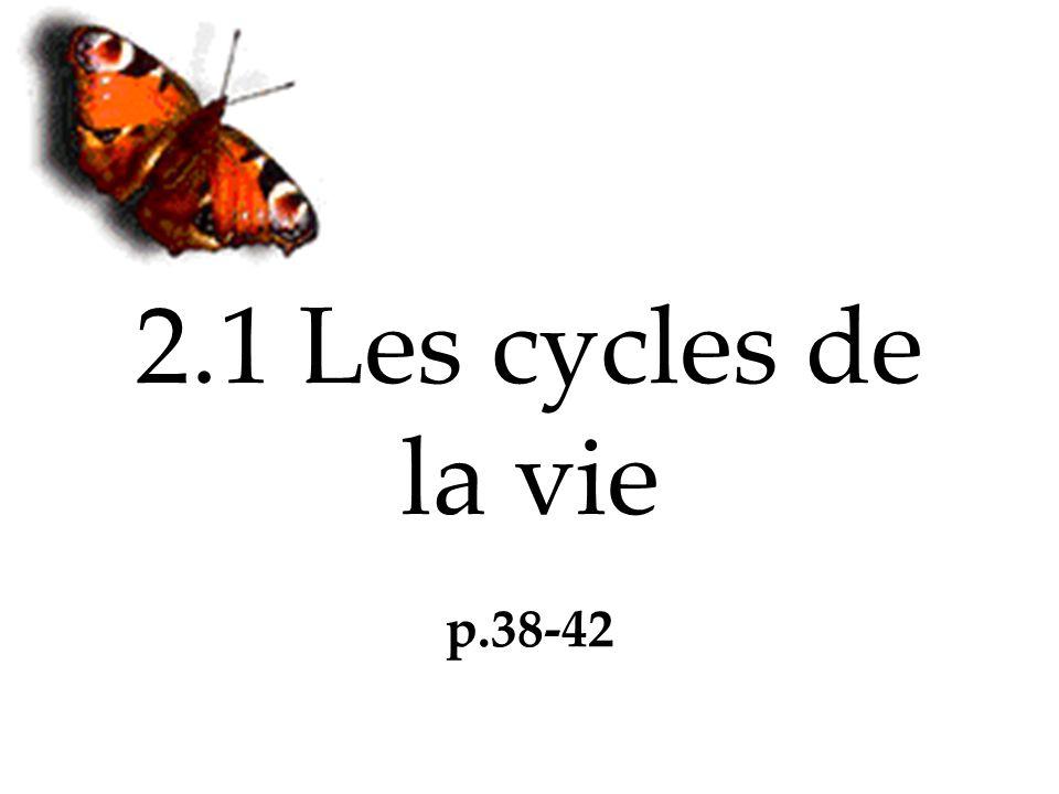2.1 Les cycles de la vie p.38-42
