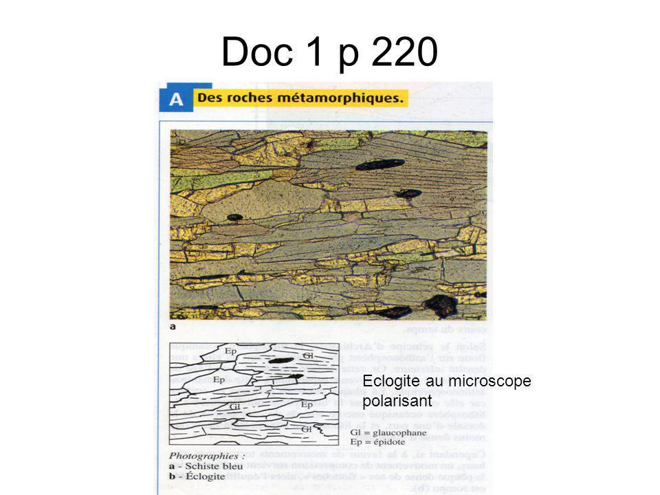 Doc 1 p 220 Eclogite au microscope polarisant