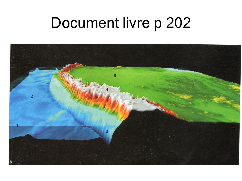 Document livre p 202