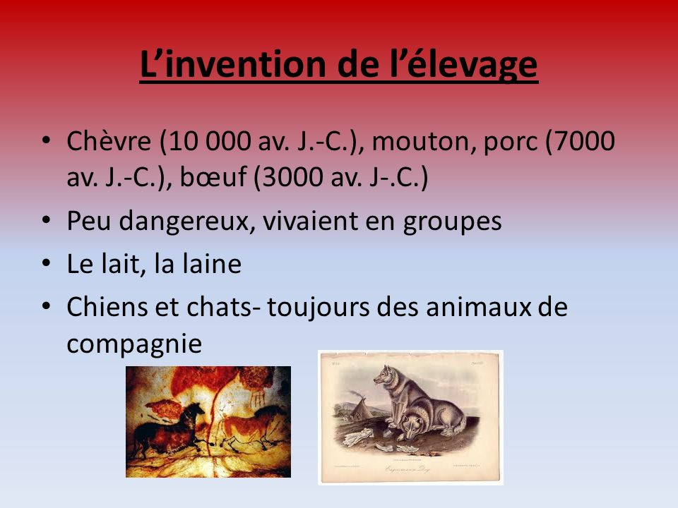 L'invention de l'élevage