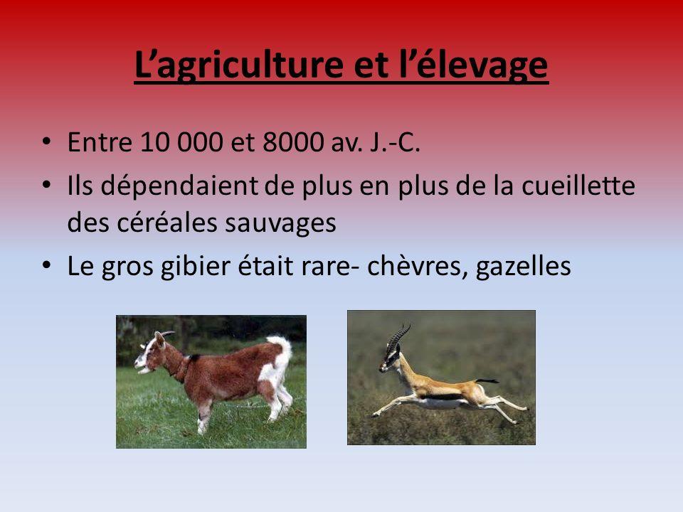 L'agriculture et l'élevage