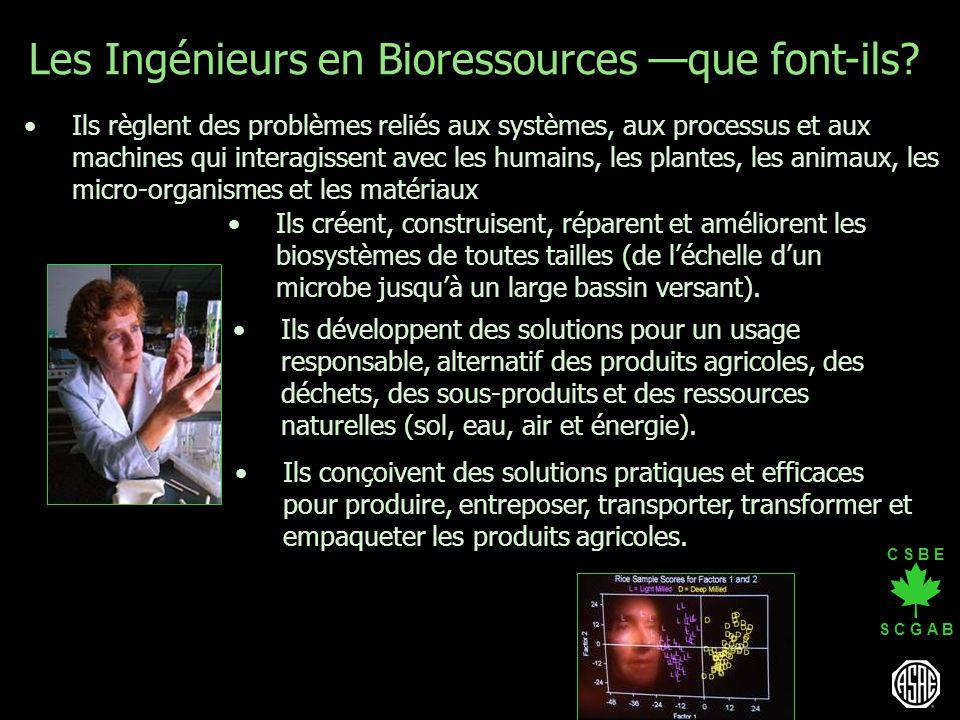 Les Ingénieurs en Bioressources —que font-ils