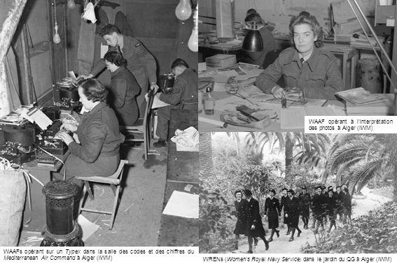 WRENs (Women's Royal Navy Service) dans le jardin du QG à Alger (IWM)