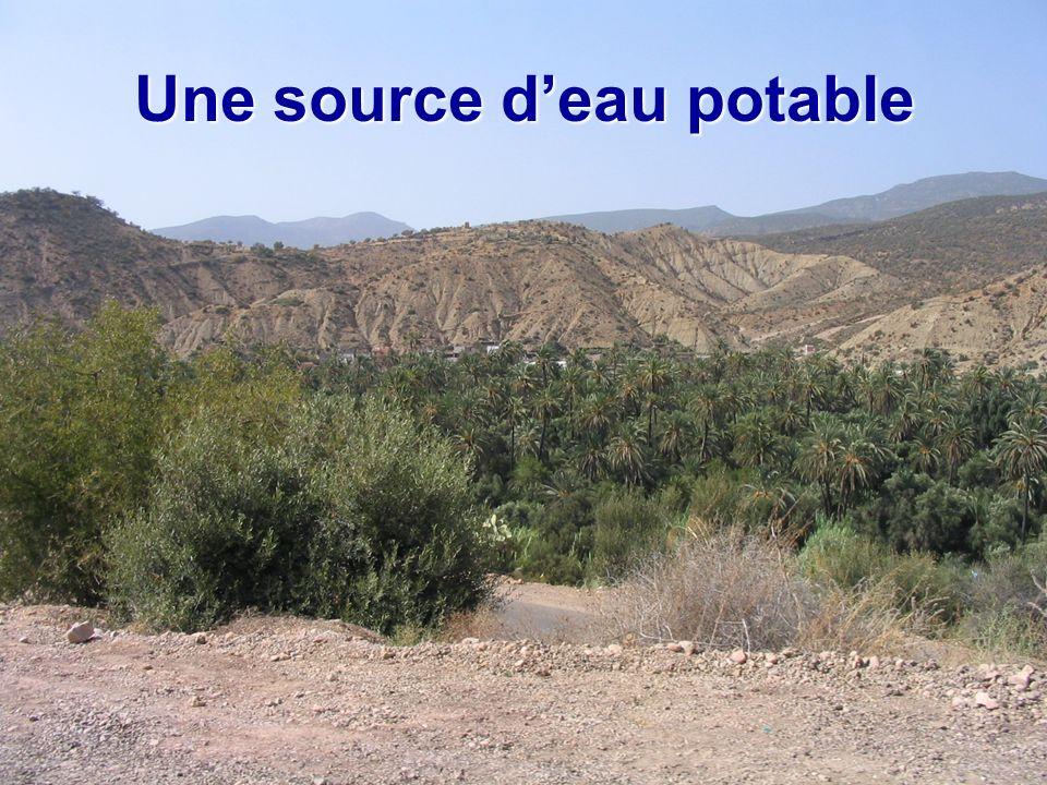 Une source d'eau potable