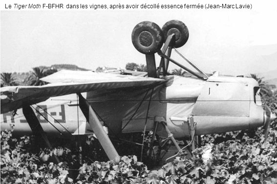 Le Tiger Moth F-BFHR dans les vignes, après avoir décollé essence fermée (Jean-Marc Lavie)