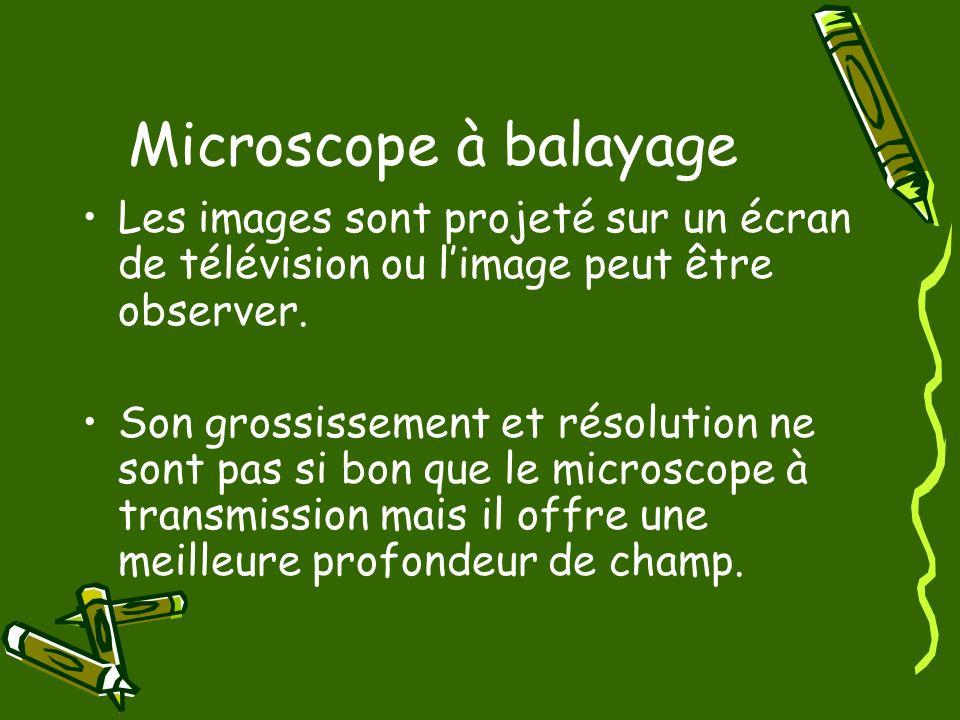 Microscope à balayageLes images sont projeté sur un écran de télévision ou l'image peut être observer.