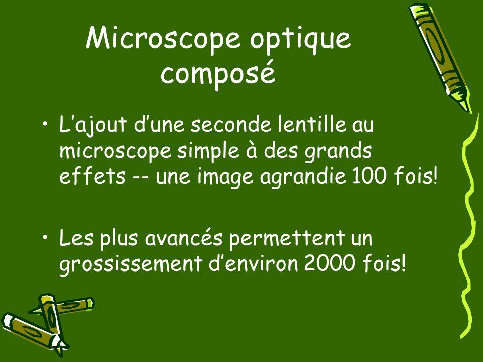 Microscope optique composé