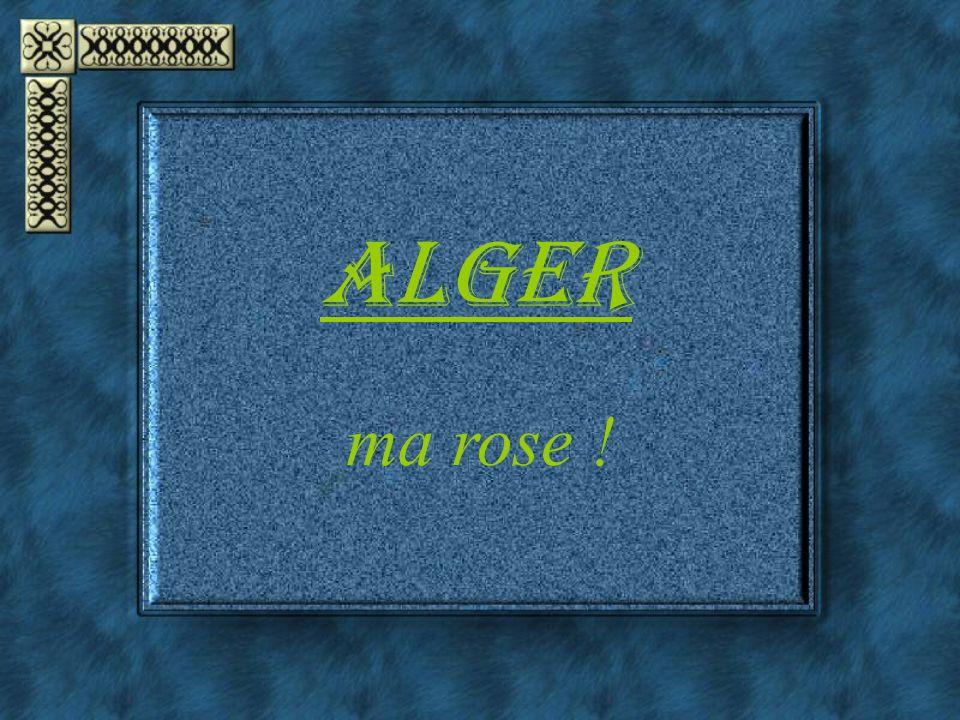 ALGER ma rose !