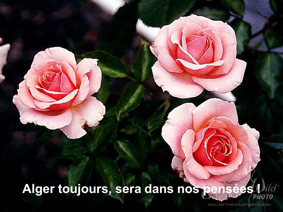 Alger toujours, sera dans nos pensées !