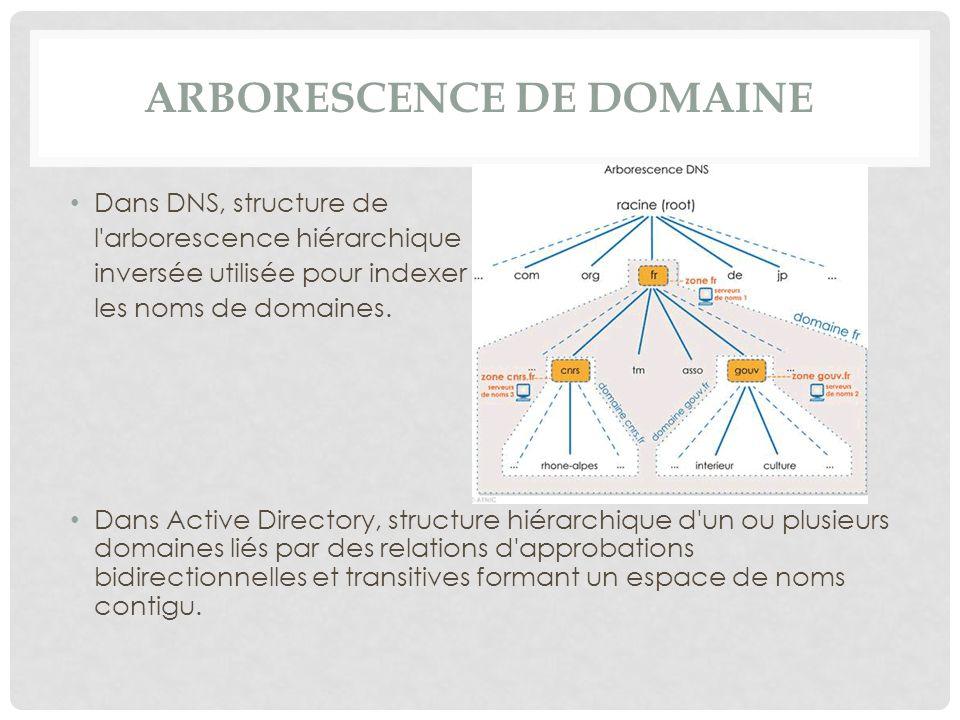 Arborescence de domaine