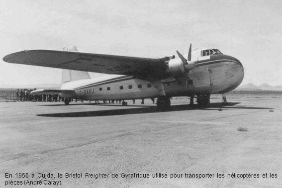 En 1956 à Oujda, le Bristol Freighter de Gyrafrique utilisé pour transporter les hélicoptères et les pièces (André Calay)