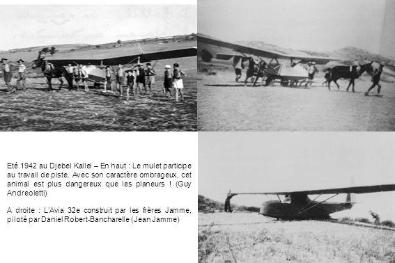 Eté 1942 au Djebel Kallel – En haut : Le mulet participe au travail de piste. Avec son caractère ombrageux, cet animal est plus dangereux que les planeurs ! (Guy Andreoletti)