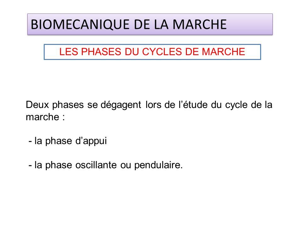 LES PHASES DU CYCLES DE MARCHE