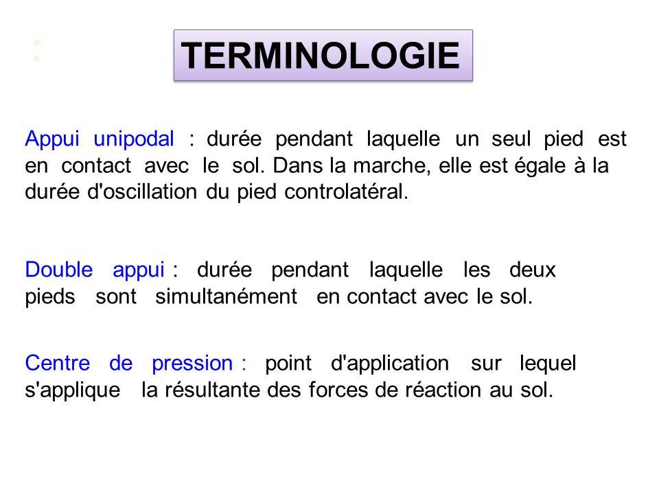 : TERMINOLOGIE.