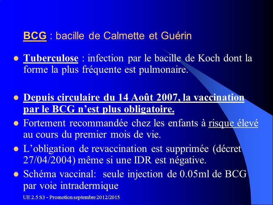 BCG : bacille de Calmette et Guérin