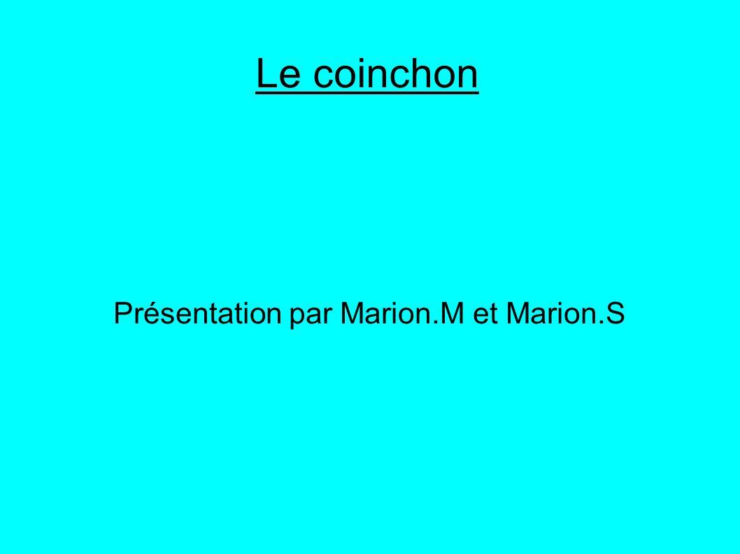 Présentation par Marion.M et Marion.S