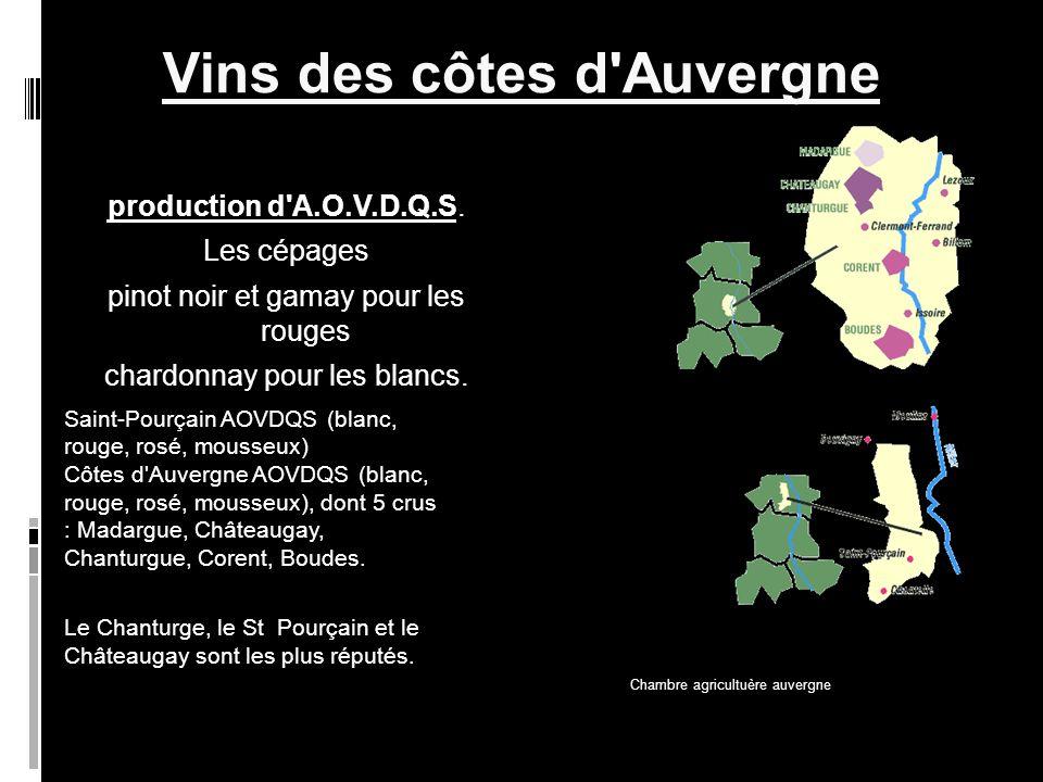 Vins des côtes d Auvergne