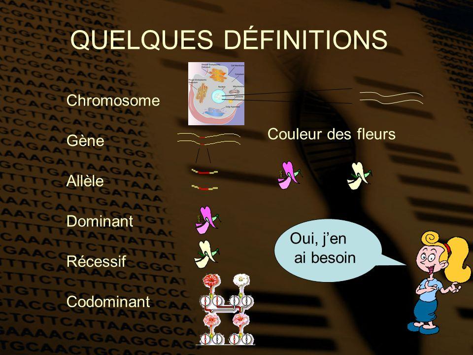 QUELQUES DÉFINITIONS Chromosome Couleur des fleurs Gène Allèle