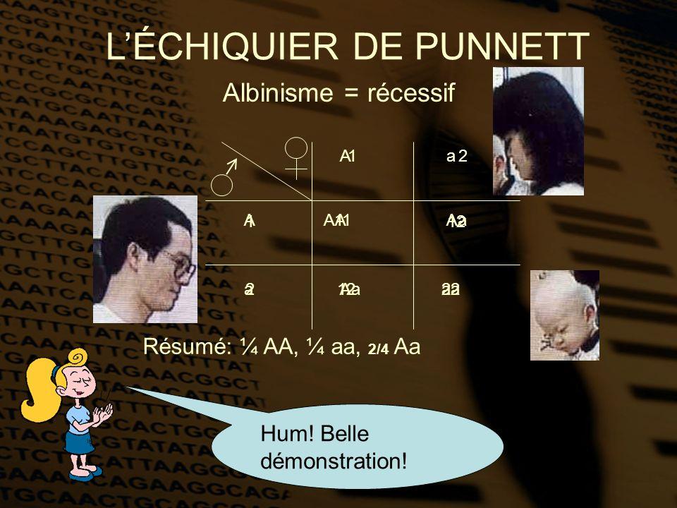 L'ÉCHIQUIER DE PUNNETT