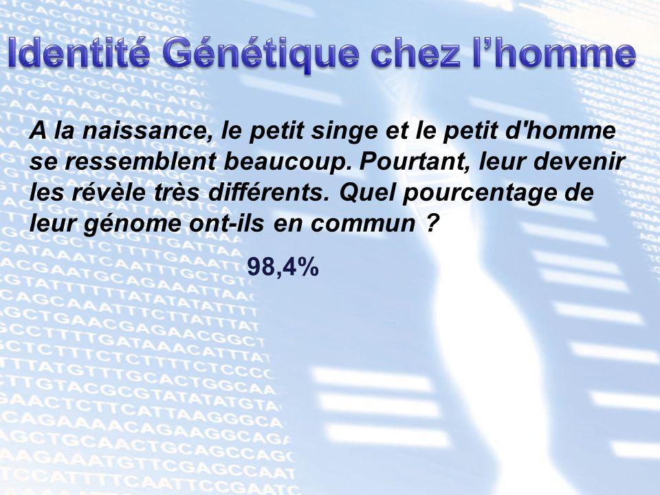 Identité Génétique chez l'homme