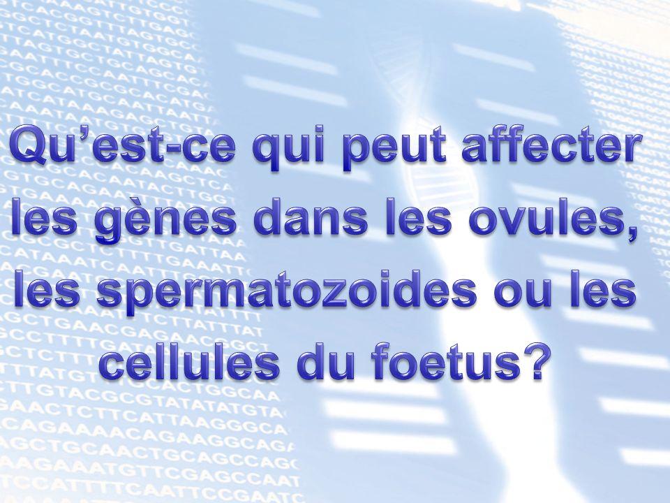 Qu'est-ce qui peut affecter les gènes dans les ovules,