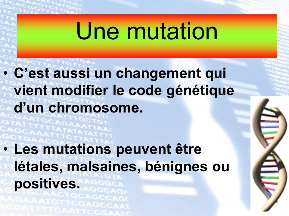 Une mutation C'est aussi un changement qui vient modifier le code génétique d'un chromosome.